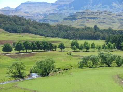 Southern Drakensberg Valley