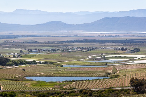 Riebeek Valley